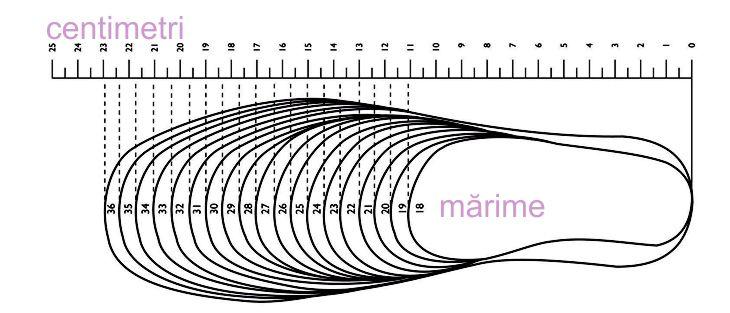 Tabel Marimi Zetpol